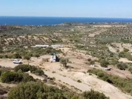Çanakkale Ezine Tavaklıda Deniz Manzaralı 11500 M2 Kelepir Arazi Satılık