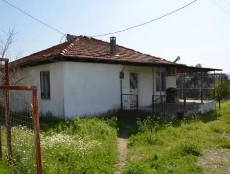 Köyceğiz Zeytinalanında Satılık Göl Manzaralı Köy Evi